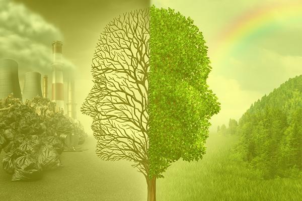 12-ambientale
